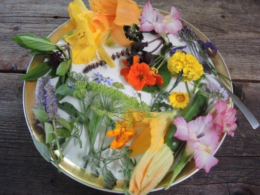 Variety of edible flowers from the garden