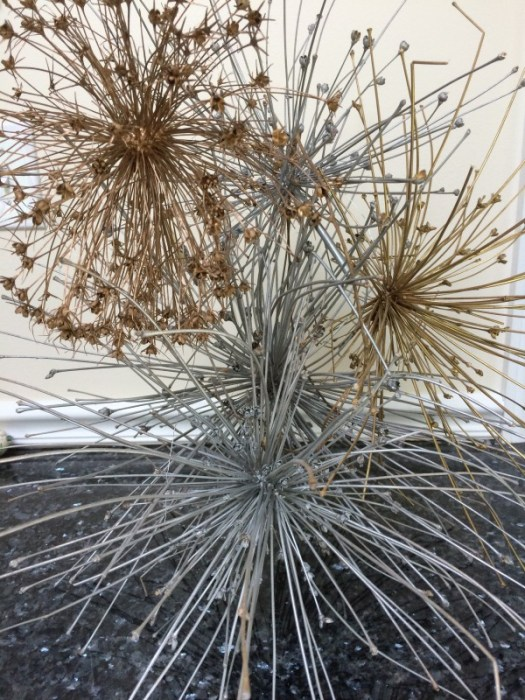 Dried allium seed heads sprayed gold and silver