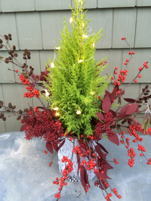 Outdoor arrangement with lemon cypress