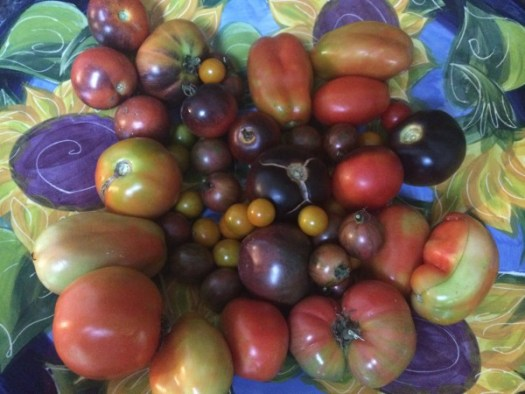 I like growing a variety of tomatoes, especially heirlooms which can get quite large