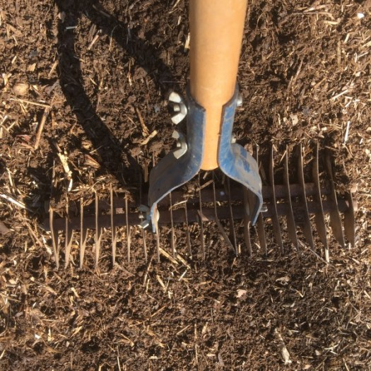 Sowing seeds with my favorite rake