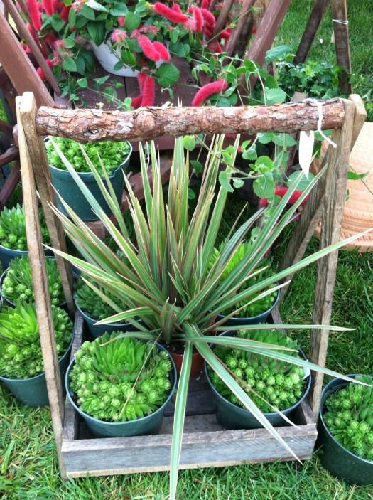Unique garden items are for sale