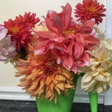 Bringing armloads of blooms in the summer will decorate your living space for weeks