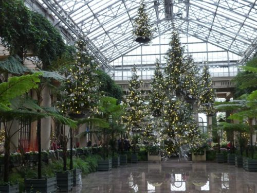 Suspended Christmas Trees