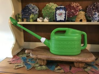 My watering can has a 6 liter capacity with a long watering wand