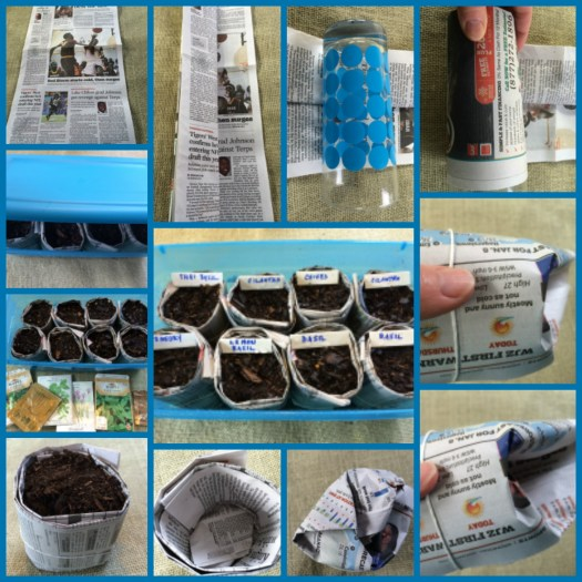 Creating seed pots with newspaper