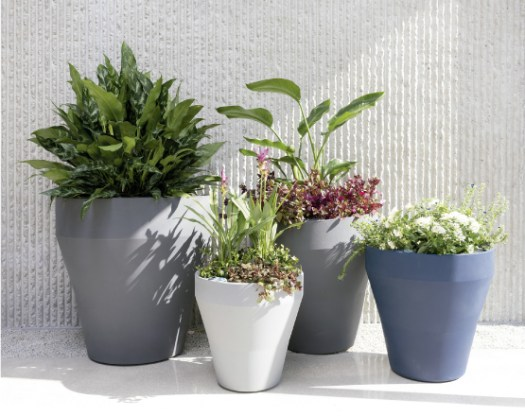 Crescent planters come in a variety of shapes and sizes