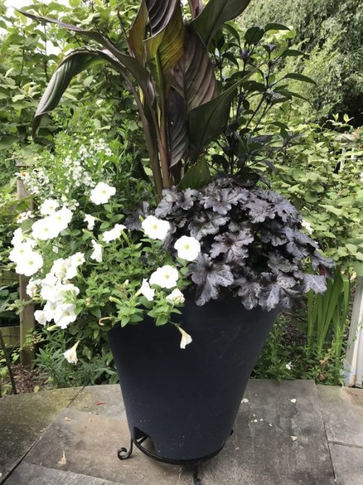 White and black container in Crescent planter