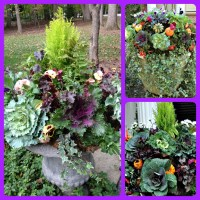 Creative Fall Containers Start With Foliage Plants