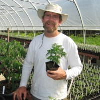 Pushing the Tomato Envelope-New and Exciting Varieties