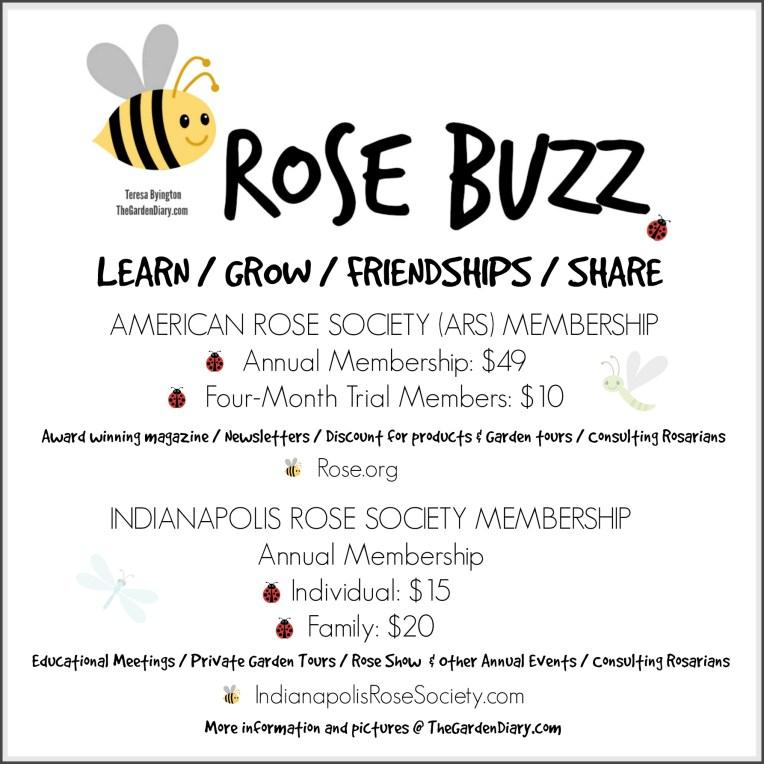 Rose Buzz_Membership