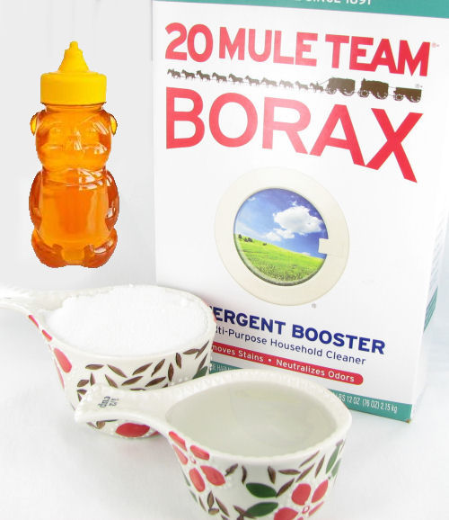 Ants In Vegetable Garden Borax To Kill How Treat Fire Large Size