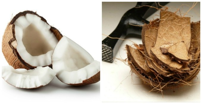Storing Fresh Coconut - How to Purchase, Open and Use
