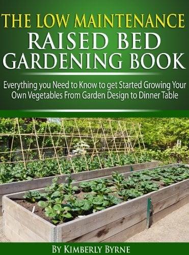 the low maitenance raised bed gardening book