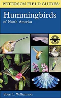 peterson field guides hummingbird - how to attract hummingbirds