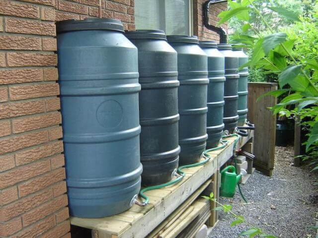 rain barrels by each other