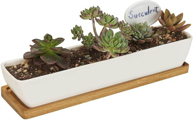 Flowerplus Indoor Window Boxq