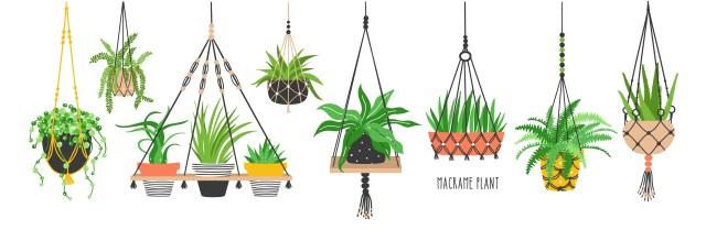 gardening containers