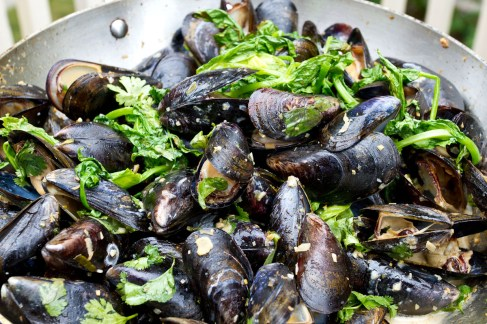 Grilled Mussels with Coconut Curry Broth-11