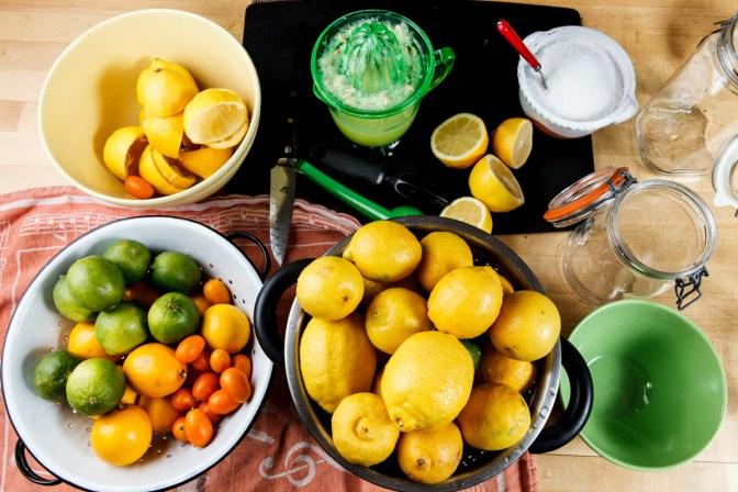 Preserved Lemons-9897