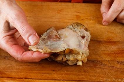 Chicken Rillettes-7635