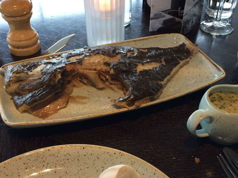 Mains – the turbot, to share