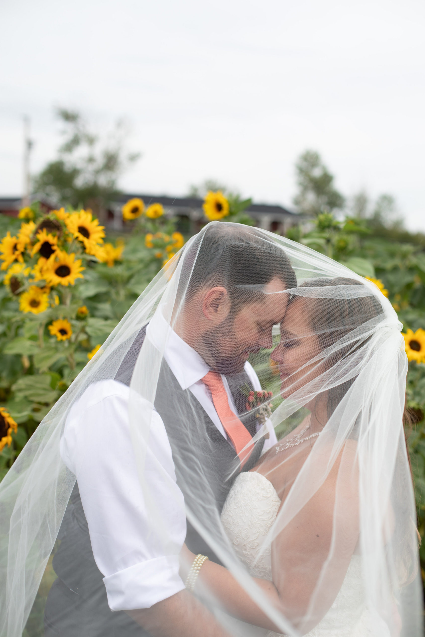 Bright yellow sunflowers surround a bride and groom as they stand in the garden. The brides veil covers them both and the grooms coral tie makes a pop against the sunflowers.