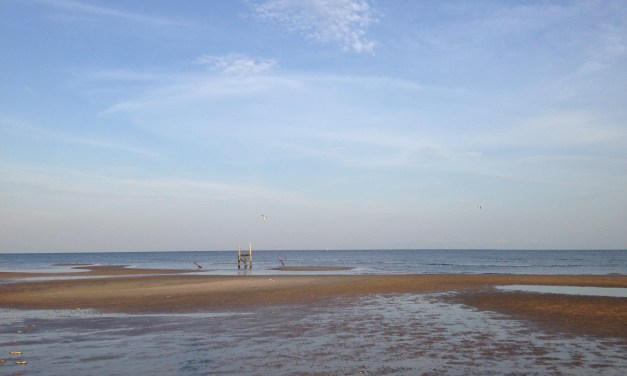 State Agency Lifts Warnings for Mississippi Beaches