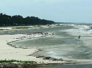 Heavy Rains on Gulf Coast add to Misery in Flood Zones