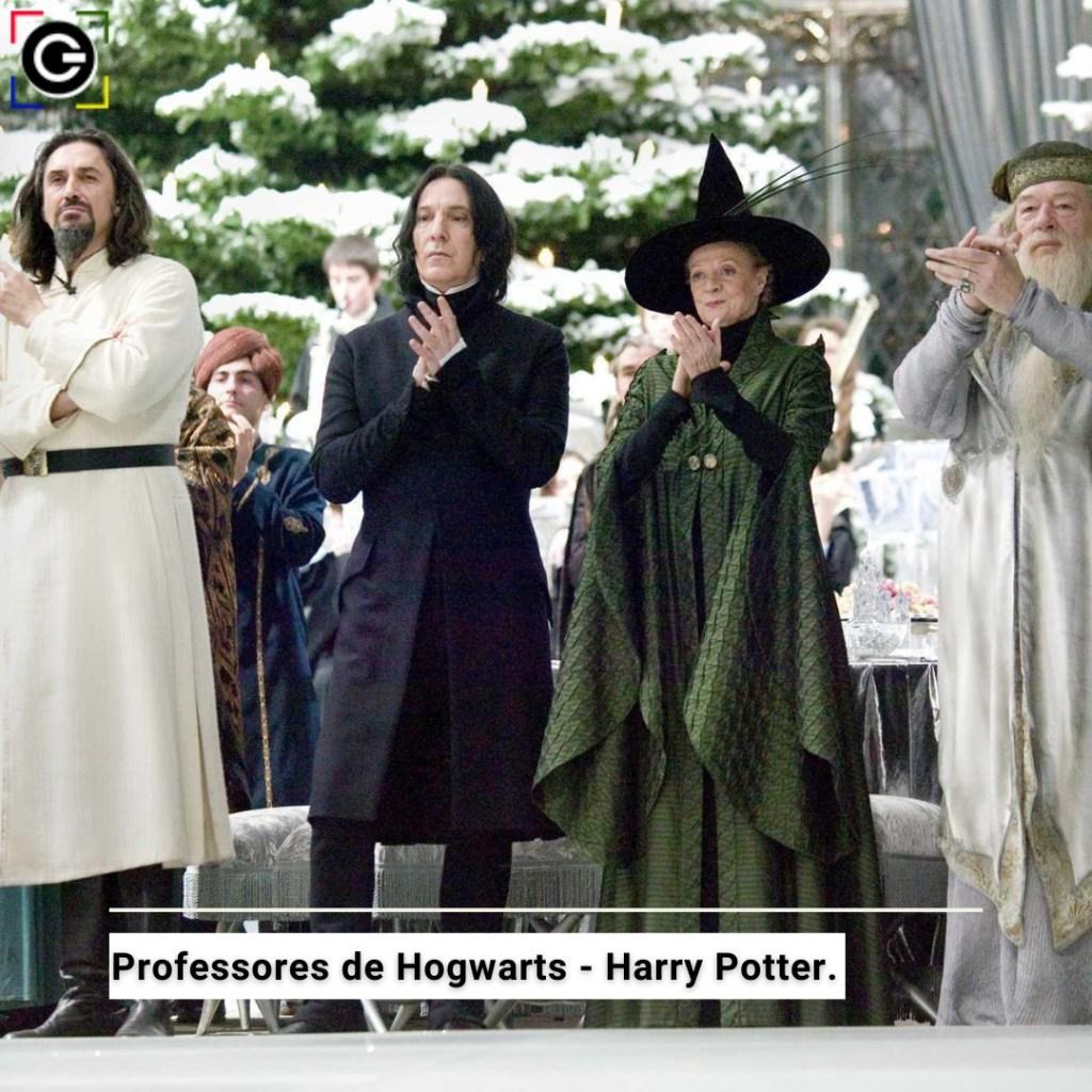 Professores de Hogwarts - Saga Harry Potter