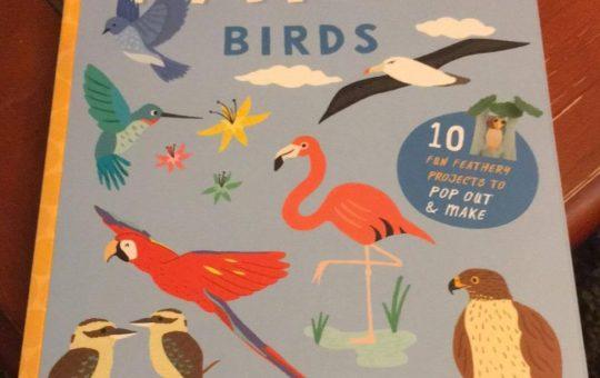 Paper Birds Ivy Kids Review Quarto Group Kids