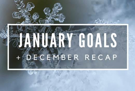 January Goals and December Recap