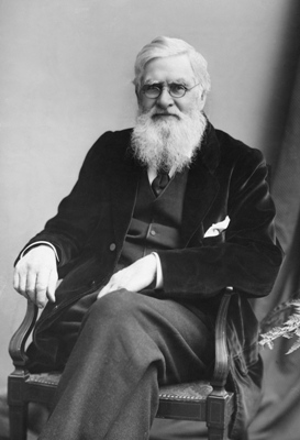 Alfred Russel Wallace - microevolution macroevolution - philosophy of evolution denial - I Don't Have Enough Faith to be an Atheist - Frank Turek and Norman Geisler