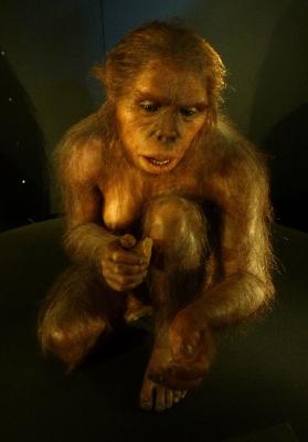 homo habilis sculpture - scientific defense of panpsychism - evolution, biology, gravity, electricity