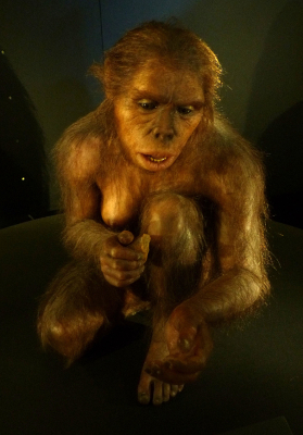 homo habilis sculpture - scientific defense of panpsychism - evolution, biology, gravity, electricity