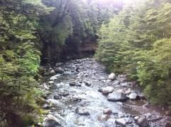 First wee stream near Whakapapa Village where I set off.