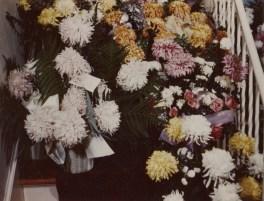 PETERSON, Darrell Skeen, Funeral Flowers 4