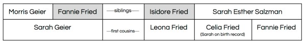 Fannie Fried & Isidore Fried sibling chart