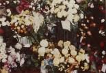 PETERSON, Darrell Skeen, Funeral Flowers 7