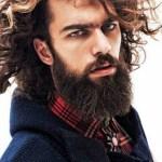 barba hipster