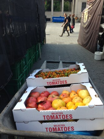 UNION SQUARE GREEN MARKET - 9:30 a.m. today - Can't wait to eat these next week!