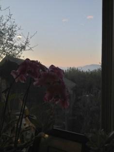 The Santa Lucia Mountains at dawn