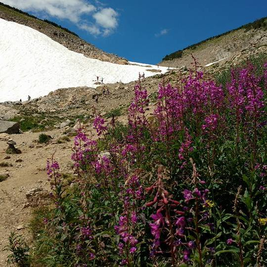 Snow on Saint Mary's Glacier