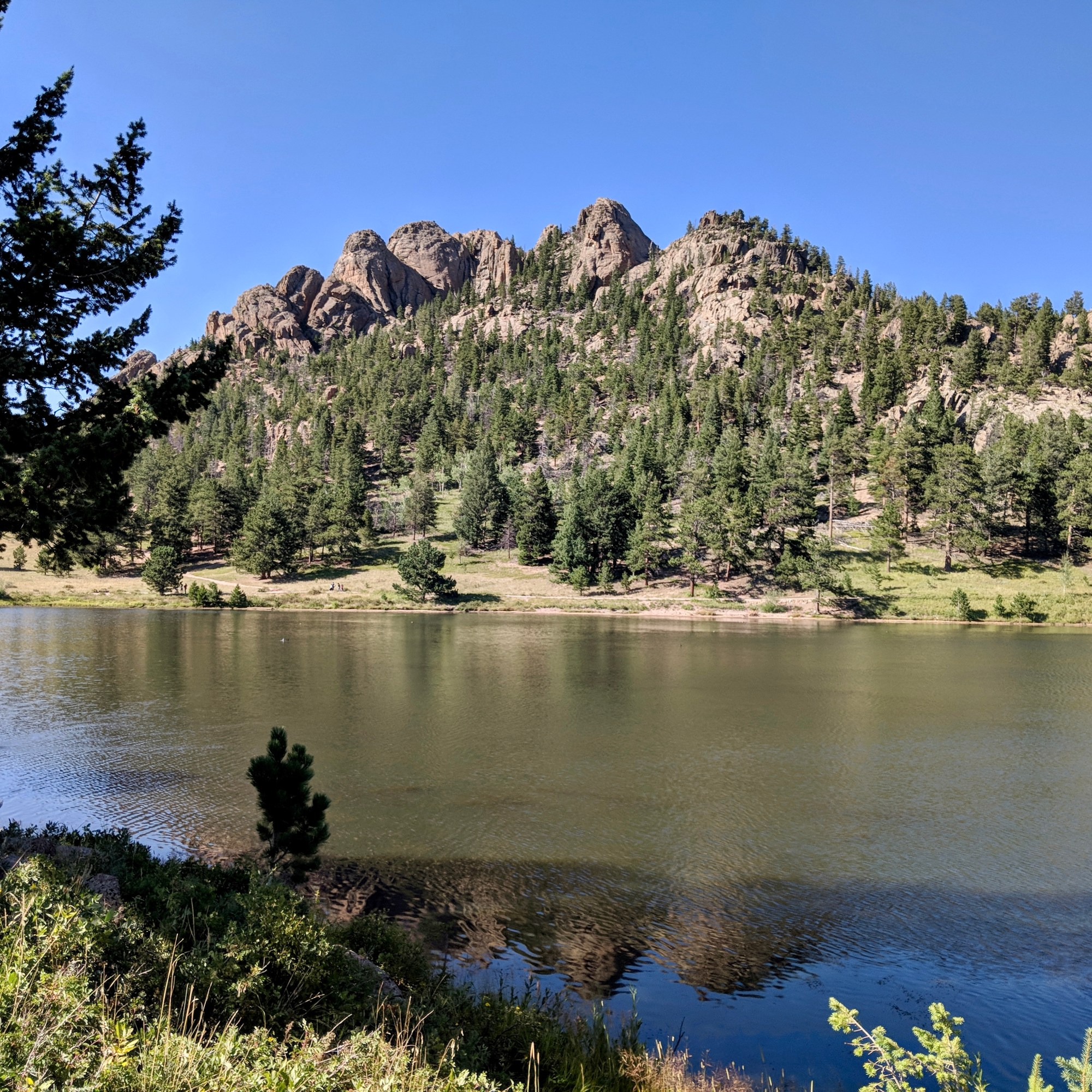 Lily Lake in Colorado.