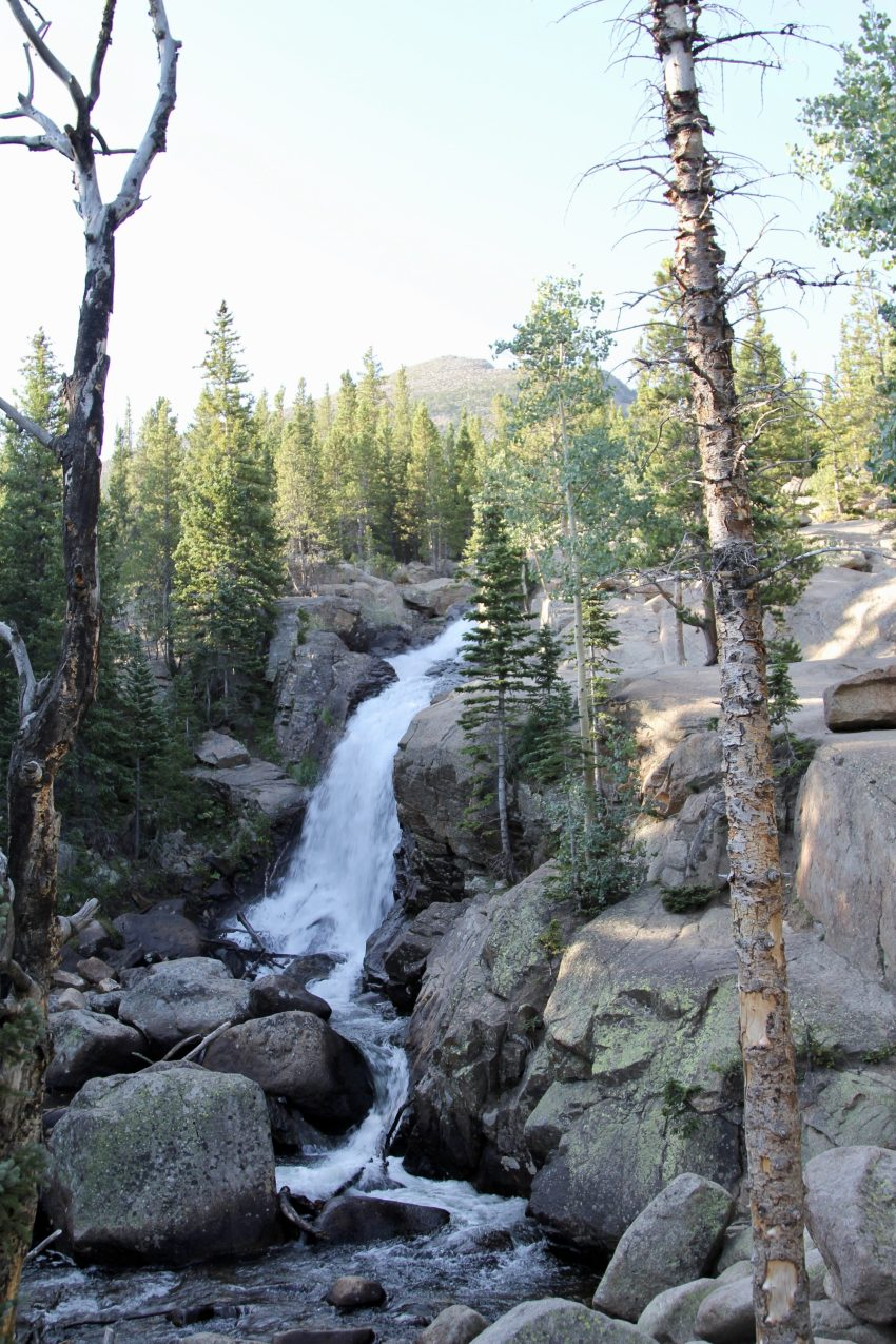 Alberta Falls Rocky Mountain National Park