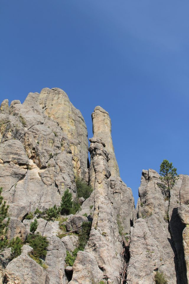 Cathedral Spires. Black Hills hiking trail.