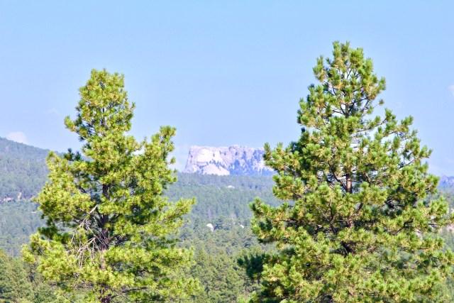Black Hills on a hiking trip