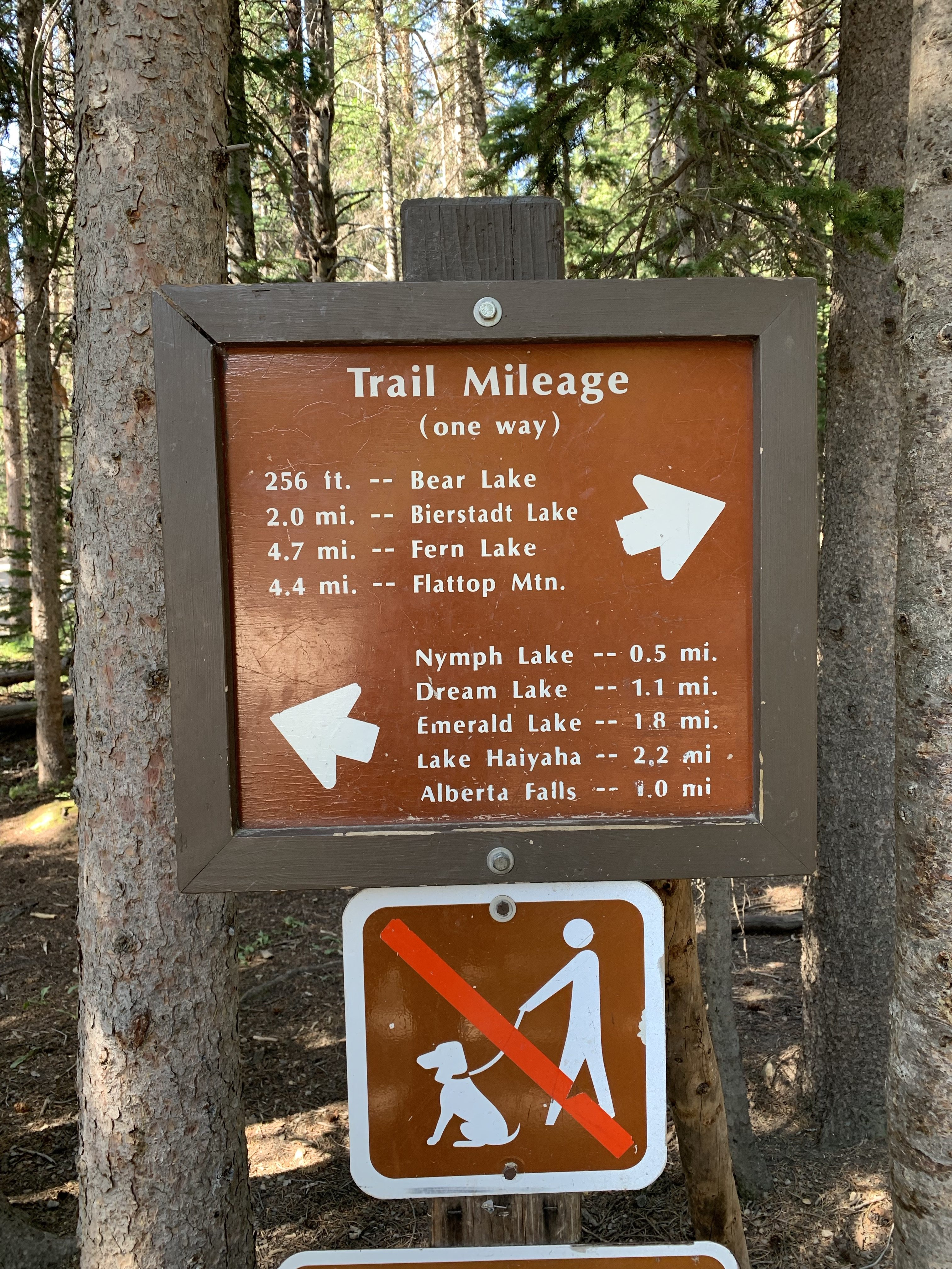 Trail Marker, Emerald Lake