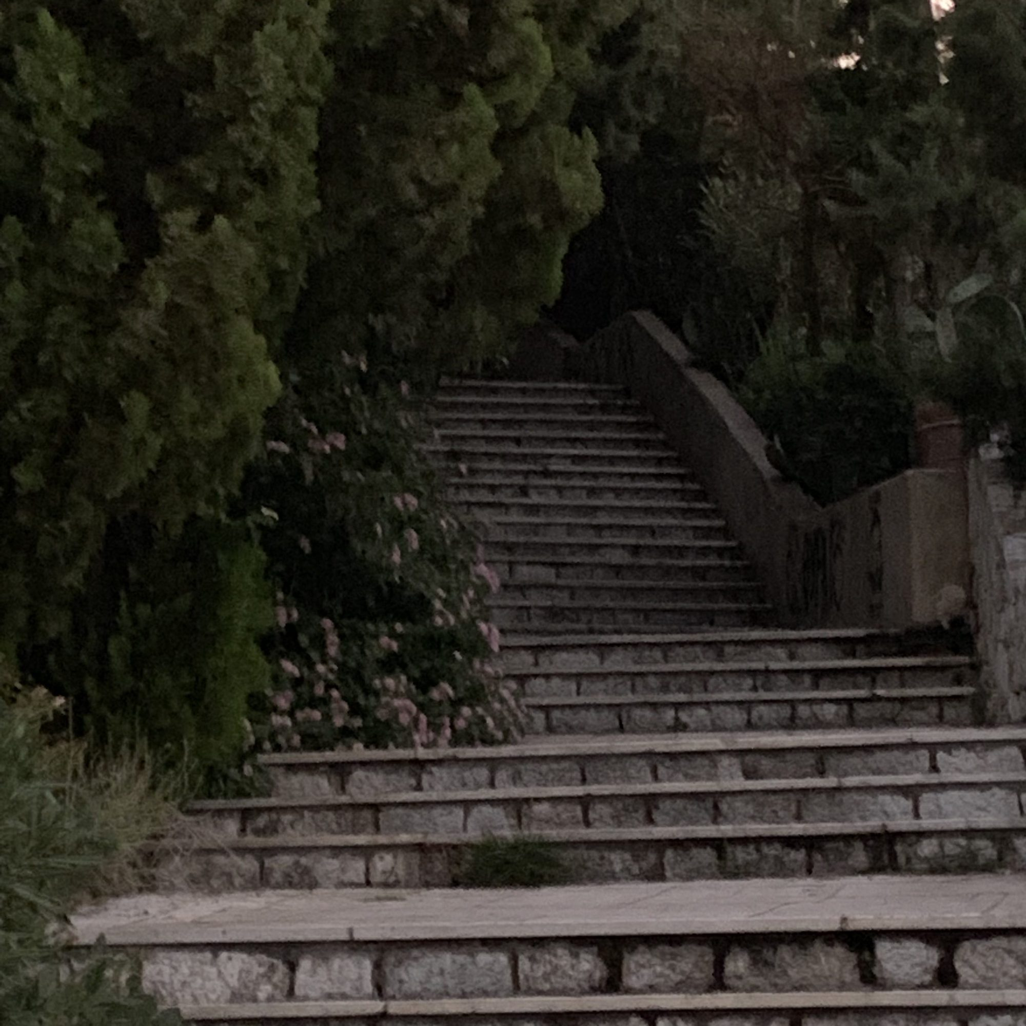 Up the Steps to Lycabettus Hill