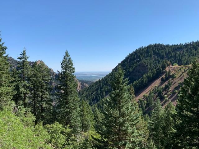Rattlesnake Gulch Trail Colorado